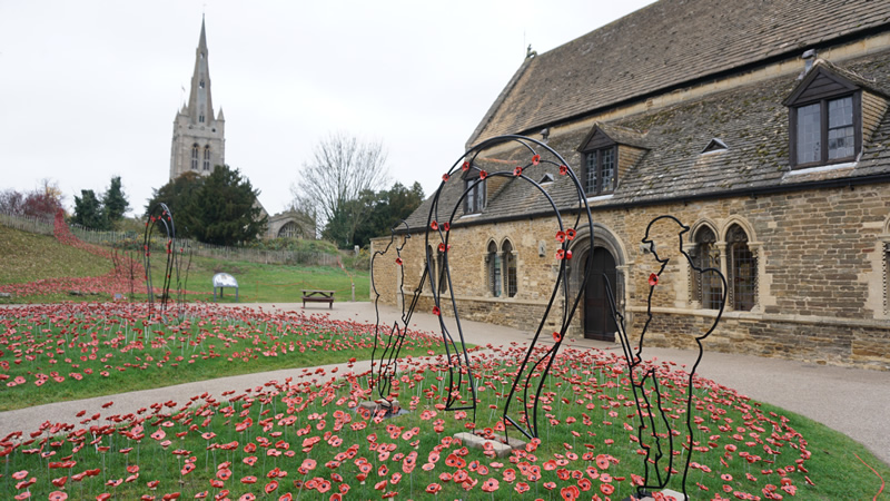 Oakham Castle and poppies
